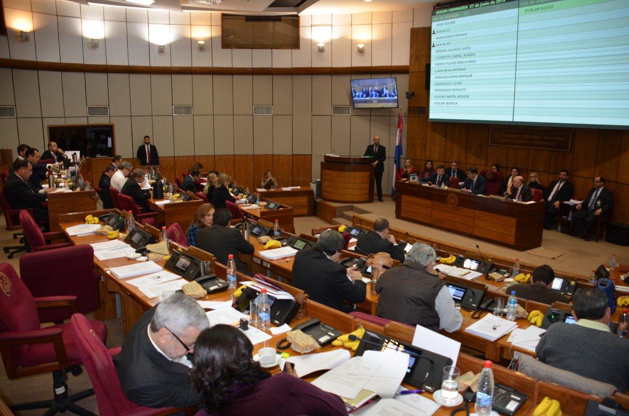 Senado levanta sesión antes de tratar Ñane Energía