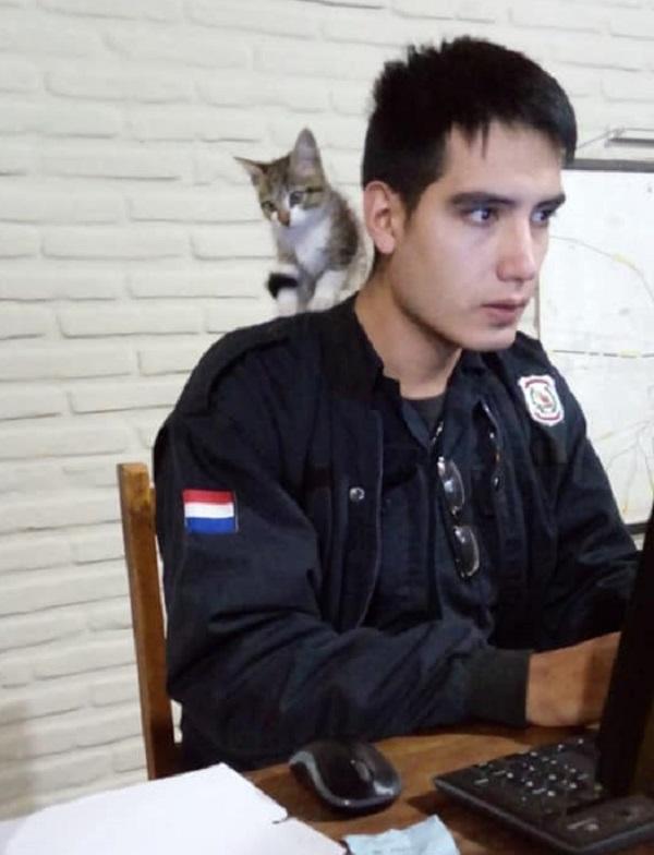 El gatito policía que te toma la denuncia en Caacupé