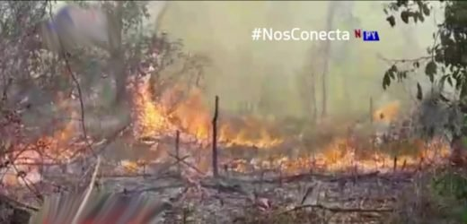 Evacuan a 70 familias de asentamiento rodeado por incendios
