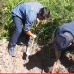 Hallan muerto a hombre que se encontraba desaparecido en San Pedro