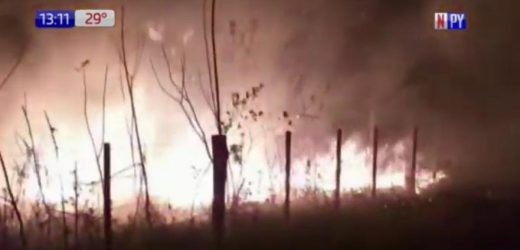 Incendio forestal en Choré